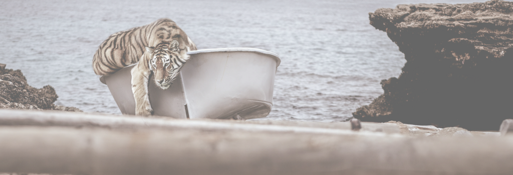 Article banner with a tiger and a boat Life of Pi