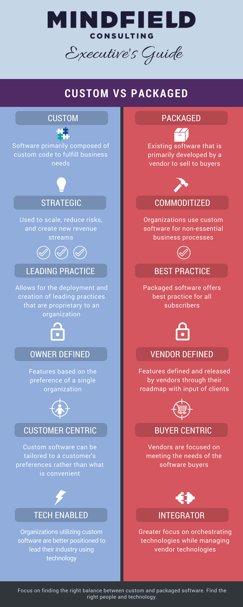 Infographic on advantages disadvantages of custom software