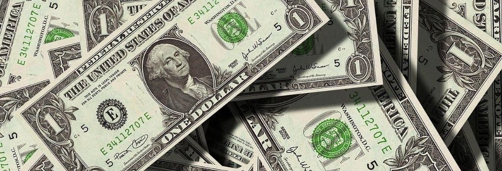 dollar bills for cost of erp article